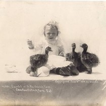 Baby with Three Ostrich Chicks from Cawston Ostrich Farm