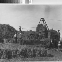 Photograph of Bailing Hay