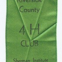 4H Guide ribbon