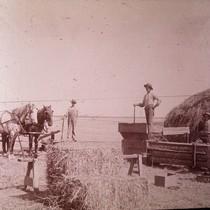 Hay baling, Warne crew