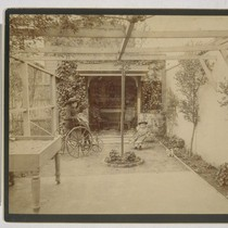 [Daisy, left, and Louise Taber, in yard of Taber residence. Photograph by ...