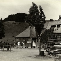 Meadow Club Riding Academy Stables, Fairfax, Marin County, California, circa 1950 [photograph]