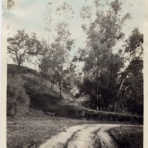 A Bank and Road Near Columbia in the Arroyo