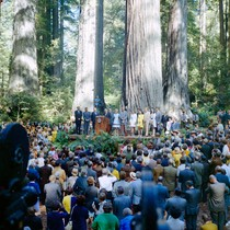 Dignitaries on stage at dedication of Lady Bird Johnson Grove, Redwood National ...