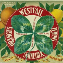 "Crate label, ""Clover Leaf Brand."" Westfall Schneider Oranges Lemons, Riverside Philadelphia, New ..."