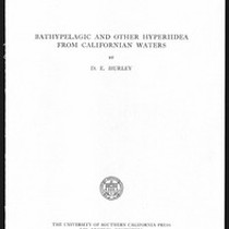 Bathypelagic and other hyperiidea from California waters