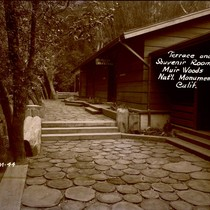 Entry to Souvenir Room in Muir Woods Administration-Operator building, 1941 [postcard negative]