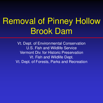 Removal of Pinney Hollow Brook Dam