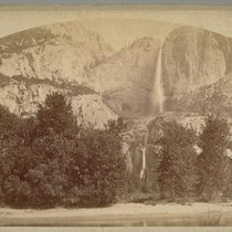 Yo Semite [Yosemite] Falls From The Cosmopolitan Walk., B 50