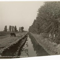 Canal & Road, Near El Centro, Imperial County, California
