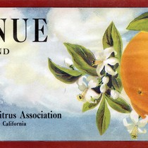 "Crate label, ""Avenue Brand."" Victoria Avenue Citrus Assn. Riverside, Calif"