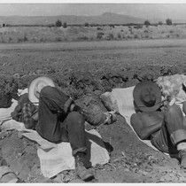 10:30 A.M. Farm workers' siesta. Photographer: Cook, John D. Newell, California