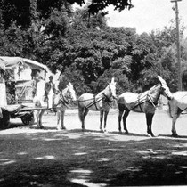 1903 Fourth of July Parade