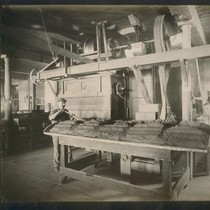 [Factory worker at cocoa table.]