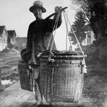 Chinese vegetable peddler c.1890 [picture] / Moses Chase album