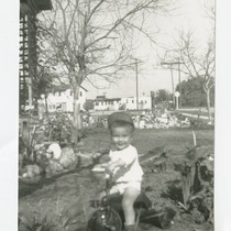 Angel Cabral on tricycle in front yard, South Whittier, California