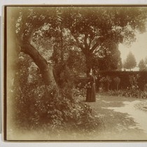 [Mrs. I.W. Taber. In garden of Taber residence? Photograph by Isaiah West ...