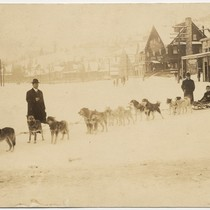 [Dog sledding in Truckee]