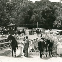 Equestrian center in the Fairfax area, Marin County, California, circa 1935 [photograph]