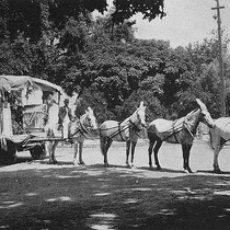 4th of July Parade Float, Porterville, Calif., 1903