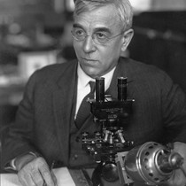 Charles Atwood Kofoid (1865-1947) working with a microscope, he was a zoologist ...