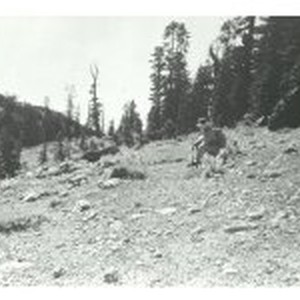 Tracing the Donner Party Route