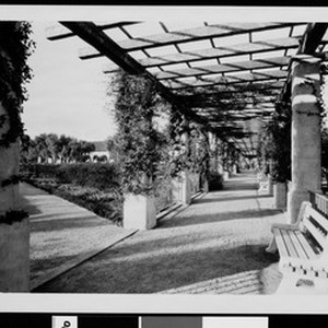 Mission San Fernando looking northwest in Pergola of Memory Garden, ca.1926