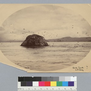 Arch Rock, San Francisco Bay? [photographic print]