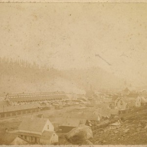 [Truckee Lumber Co.]