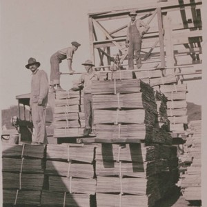 Carpenters and workmen pile lumber at Construction Center, Assembly Camp in Temescal ...