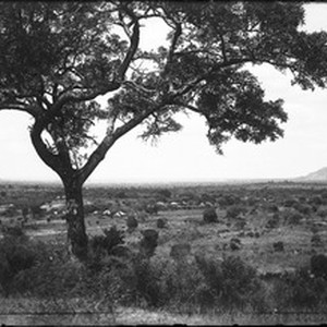 View of a plain, Shilouvane, South Africa, ca. 1901-1907