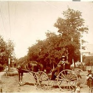Horse, buggy and rider in Healdsburg