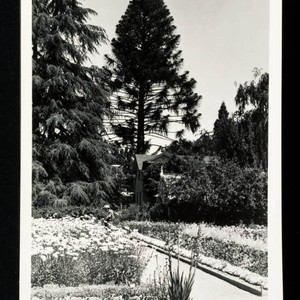 Photo of Grounds with Cedar & Cottage
