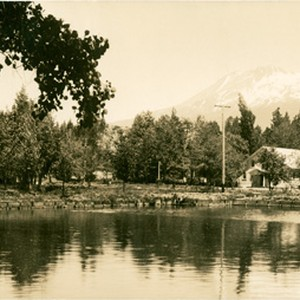 Mt. Shasta from fish hatchery Mt. Shasta City, Cal., #102