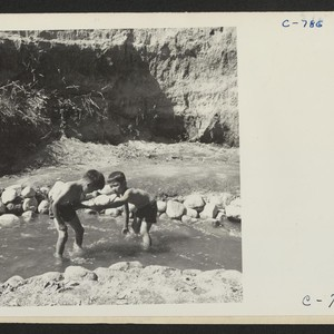 Manzanar, Calif.--Evacuee children enjoying a hot summer afternoon in the mountain creek ...