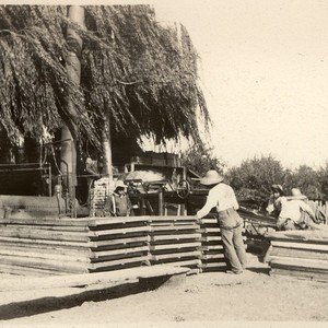 Drying trays and agricultural laborers at Coyote Ranch