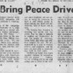 Youths bring peace drive into SC