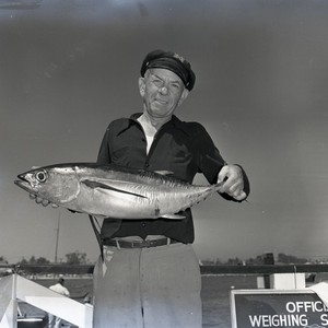 Angler with albacore at Balboa Angling Club weighing station, Newport Beach, California: ...