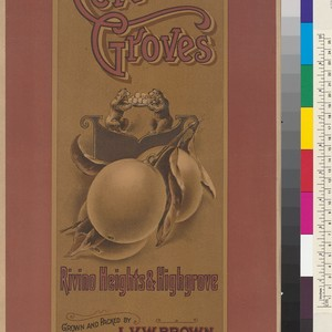 Cerrito Groves, Rivino Heights and Highgrove, Grown and Packed by L.V.W. Brown, ...