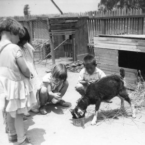 Children and goat