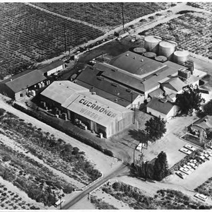 Aerial photograph of Cucamonga Winery