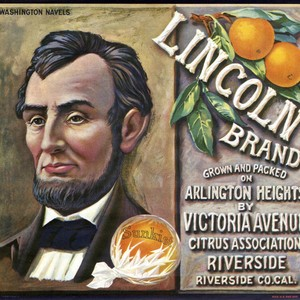 "Crate label, ""Lincoln Brand."" Grown and packed on Arlington Heights by Victoria ..."