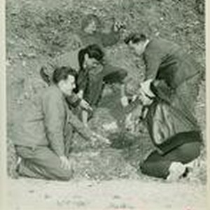 Students kneeling around a hole in the ground
