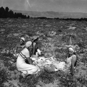 Women at picnic