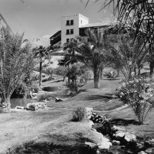 Palm garden at Death Valley's Furnace Creek Inn