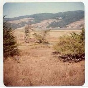 Photographs of landscape of Bolinas Bay