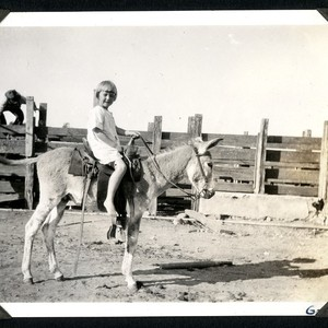Mildred Christman and her pet burro at the Johnson Ranch at San ...