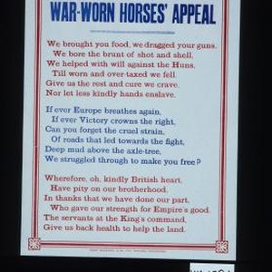 The war worn horses' appeal. We brought you food, we dragged your ...