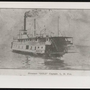 Paddle steamer Steamer Gold