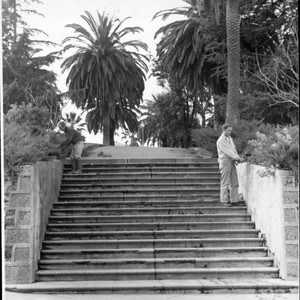 Gardeners tending to plants around the stairs at Hill Plaza Park, Petaluma, ...